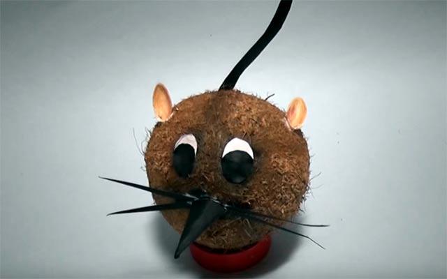 кокосовая мышка