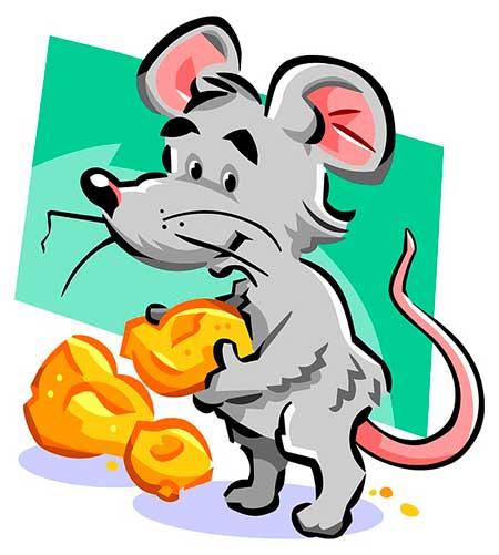 мышка за рулем